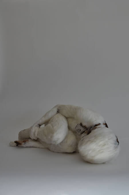 Feather-Child-lucy-Glendinning