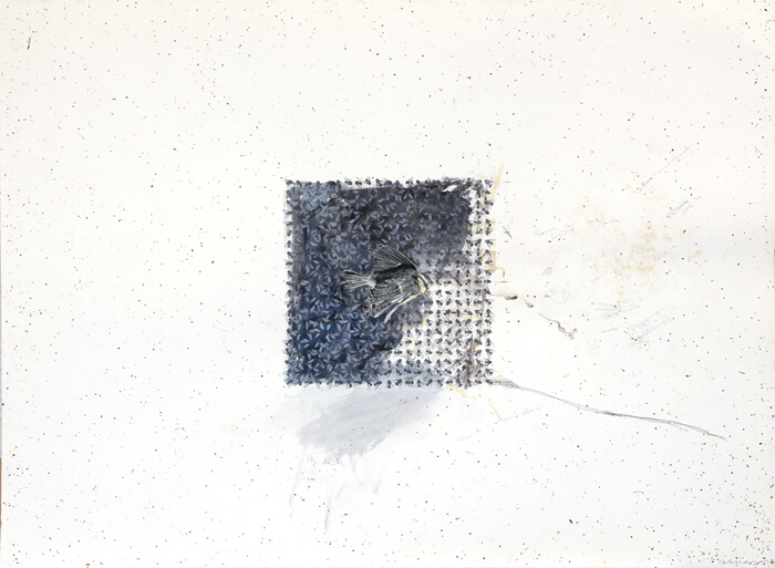 Little-Death-2014-claire-morgan