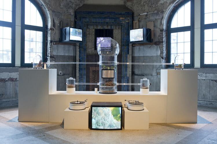 2.0hm1gas-biomimetic_stridulation_environment-2012-Manifesta_12_european_biennial_of_contemporary_art_in_Genk
