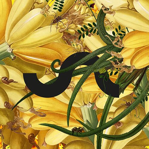 logo-profile_flower-power low