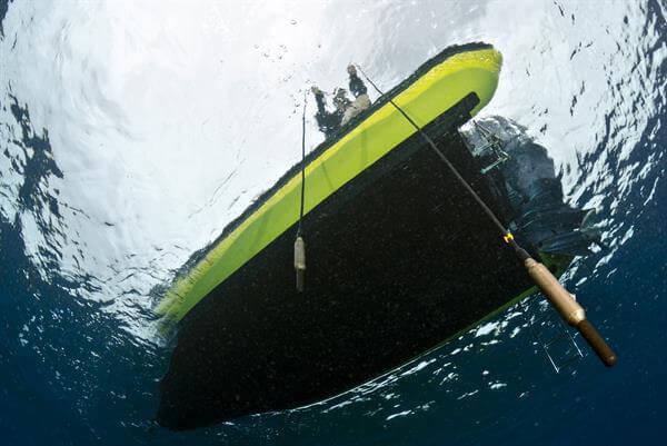 Jana Winderen, Silencing of the Reefs, 2013