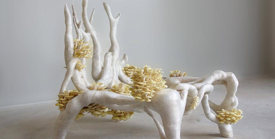 Eric Klarenbeek, Mycelium chair, 2012-2013 © DR