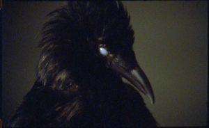 Marianna-Simnett-The-Bird-Game-2019_6