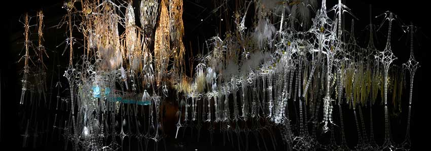 Epiphyte-Chamber-Museum-of-Modern-and-Contemporary-Art-Seoul-KR-2013