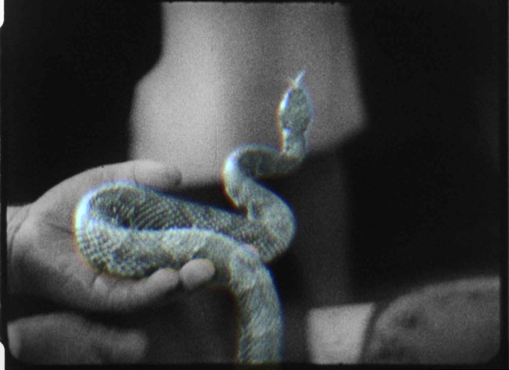 Jeremy Shaw, Quickeners, 2014, 16mm film transferred to video, 36′24″, coloor, sound. Video still. Courtesy of the artist and König Galerie, Berlin.